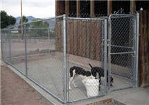 Chain Link Dog Run