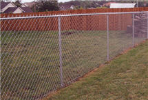 Traditional Chain Link Fence